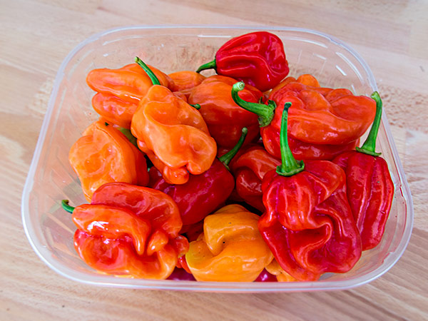 Tropical Red Peppers
